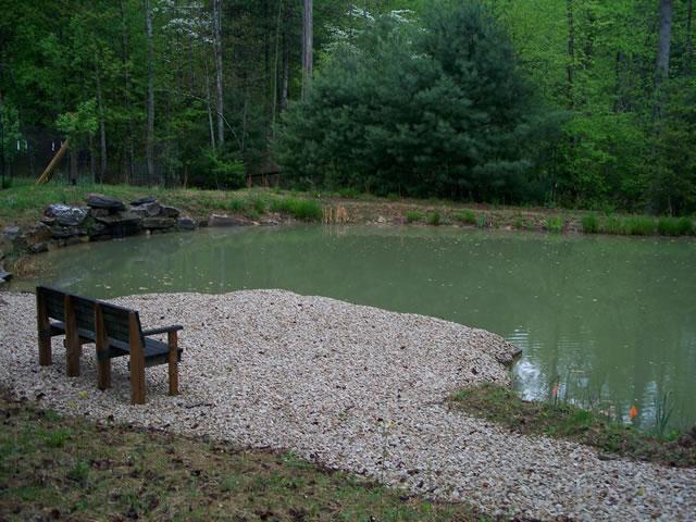 brightwood-pond-3