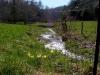 pasture-next-to-brightwood