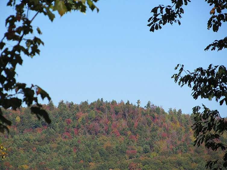 fall2011-1